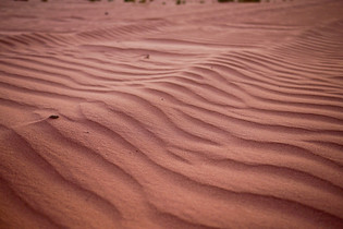 The delicate patterns of desert sands in Wadi Rum, Jordan