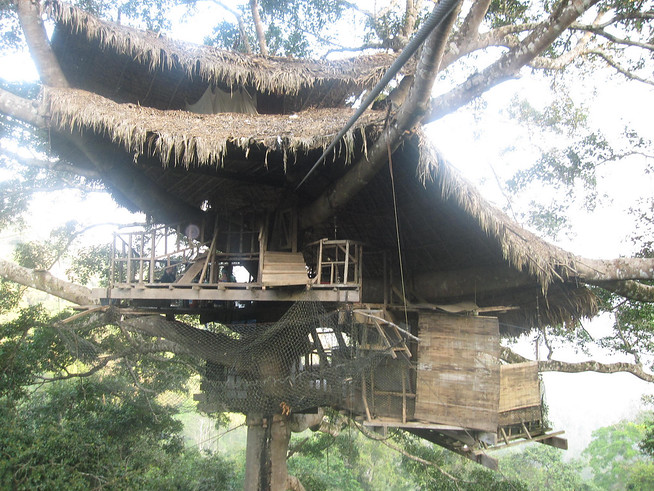 Treehouse One Perched in the Laos Jungle